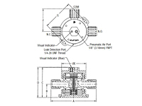 Furon® UPM 1000 Diaphragm Valve, Slurry Option Pneumatically Actuated 3-Way-2